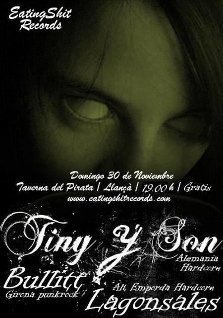 tinyllan-2