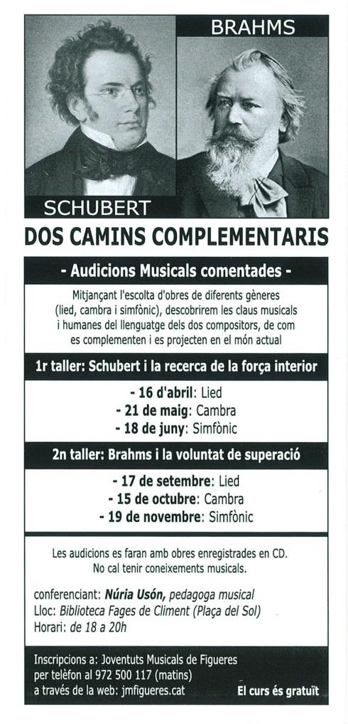 schubert-brahms