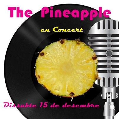 pineapple vilanant 2012 sonabe